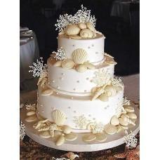 """Свадебный торт """"Морские ракушки"""""""