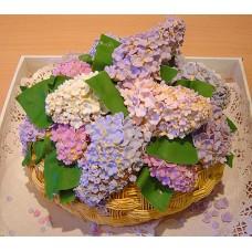 """Торт """"Сирень"""""""