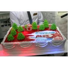 """Новогодний торт на заказ """"Новый год в """"Европа+"""""""