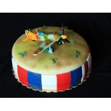 """Торт """"Самолет на базе"""""""