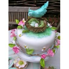 """Торт """"Птичка в гнезде"""""""