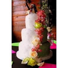 """Свадебный торт """"Свадьба скейтбордистов"""""""