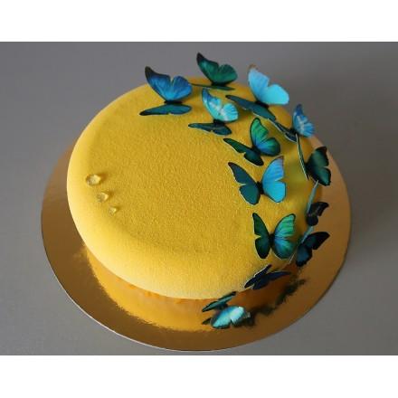 """Торт с велюровым покрытием """"Голубые бабочки на велюре"""""""